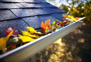 10_Fall_Home_Maintenance_Musts